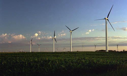 nastroj_filed_of_wind_turbines